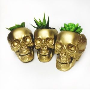 Golden Skull Planters/Containers